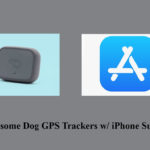 5 Awesome Dog GPS Trackers w/ iPhone Support