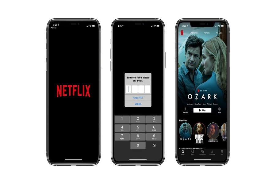 Lock Netflix Profile