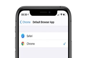 Change Default Browser in iOS 14 On iPhone