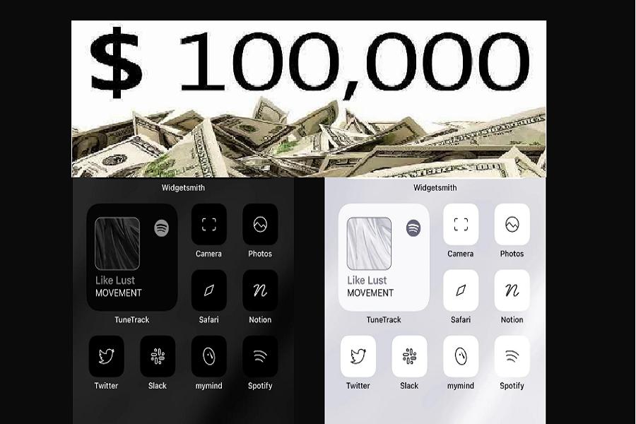 Designer Earn $1, 00,000