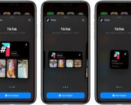 TikTok widgets to iOS 14