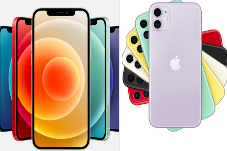 iPhone 12 or iPhone 11